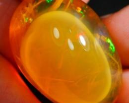 42.54Ct Phantom Ghost Plant Inclusion Ethiopian Welo Specimen Crystal Opal