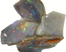22.35 CTS OPALIZED SHELL FOSSIL PARCEL UNTOUCHED [BR5641]