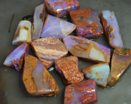 320.CTWOOD FOSSIL BOULDER OPAL  TO174