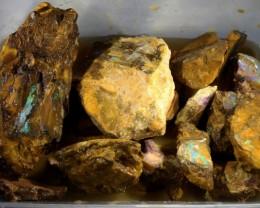 2200 Cts Boulder rough Vegetation /Fossil QOM 1632