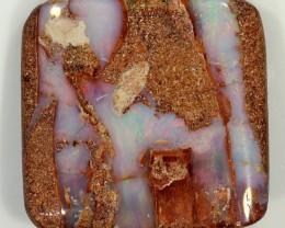 28ct 26x24mm Pipe Wood Fossil Boulder Opal  [LOB-836]