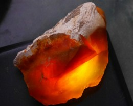 72.30 CRT RARE INDONESIAN CRYSTAL OPAL POTCH WOOD ROUGH