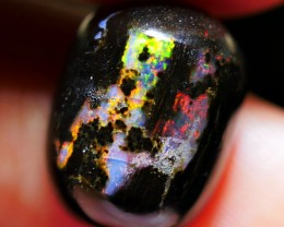 4.60 CRT BEAUTY BRIGHT FIRE POLISHED INDONESIAN WOOD FOSSIL OPAL