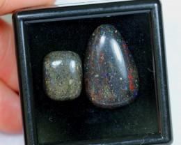 No Reserve~ 18.63Ct 14x11mm , 23x15mm Black Matrix Honduras Opal Polished
