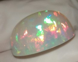 Screamin Bright® Welo Honeycomb Rainbowprism  Highdome