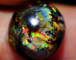 4.15 CRT STUNNING EPIC BRIGHT FIRE COLOR WOOD FOSSIL INDONESIAN OPAL