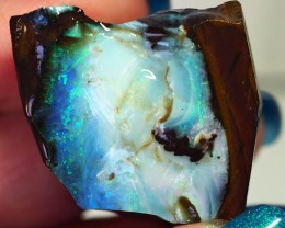 100.55CT VIEW ROUGH QUEENSLAND BOULDER OPAL GM307