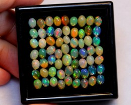 NR Auction ~  15.51ct Oval 5x4mm Welo Opal Parcel Lot