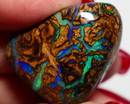 43.85CT VIEW KOROIT BOULDER OPAL GM564