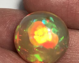 20.80ct Brilliant 5/5 Layered Mix Patterns Welo Ethiopia Opal Cab. 22x11mm