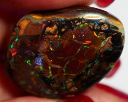31.50CT VIEW KOROIT BOULDER OPAL GM591