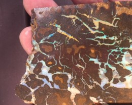 Veined  Boulder Opal  slab JO 2156