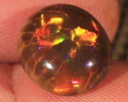 6.58CT~BRILLIANT 5/5 BROWN BASE WELO OPAL CAB~ CELLED PATTERN