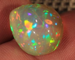 10.50CT~BRILLIANT 5/5 WELO OPAL CAB~FOSSIL PLANT MATTER?