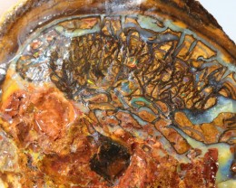 790Cts Pair opal specimen   QOM 1717