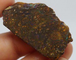 49.70CT VIEW ROUGH QUEENSLAND BOULDER OPAL RR40