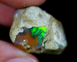 27Ct Welo Opal Rough Specimen