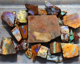 2015 cts Parcel Rough Opal Boulder from Winton Queensland australia SU 81
