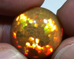 15.0  ct Blinding Color Gem Honeycomb Rainbow Welo Cab M81