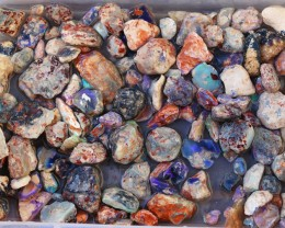 0.387 Kilos Australian Lightning Ride Fossil Rough Opal SU 574