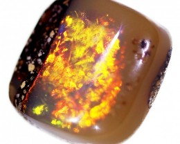 2.1 ct 8x8mm Pipe Wood Fossil Boulder Opal  [YPB-0026]