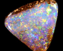 2ct 9X9 mm Pipe Wood Fossil Boulder Opal  [YPB-0040]