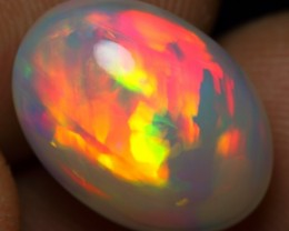 7.50cts 5/5 BROAD MULTI FIRE  Natural Ethiopian Welo Opal