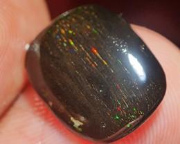 2.15 crt amazing lasser wood fossil opal