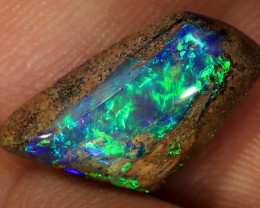 4.6ct 14x9mm Pipe Wood Fossil Boulder Opal  [LOB-1337]