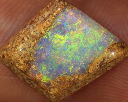 5.2ct 11.5x10mm Pipe Wood Fossil Boulder Opal  [LOB-1339]