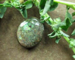 "7.5cts,""ANDAMOOKA MATRIX OPAL~UNBEATABLE VALUE!"""