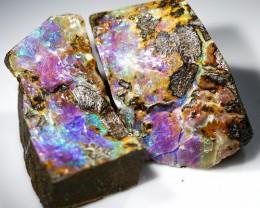 202.80 cts Split Boulder Opal Specimens W