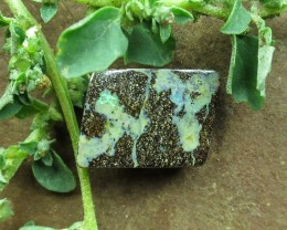 "11cts, ""BOULDER OPAL~BARGAIN GEM FLASH"""
