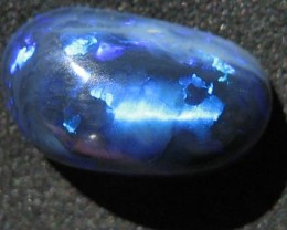 OpalWeb - Black Opal from The Ridge - 4.25Cts -