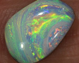 2.2ct 10.6x7.4mm Pipe Wood Fossil Boulder Opal  [LOB-1542]