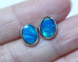 Cute  blue  fire  Doublet opals in stylish silver earrings SU 1498