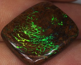 19ct 22x18mm Queensland Boulder Matrix Opal  [LOB-1755]