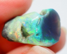 8.85CT   BLACK OPAL WOOD FOSSIL RIDGE OI529