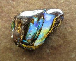 "22cts,""BOULDER FOSSIL WOOD OPAL"""