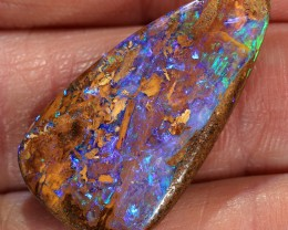 12.5ct 27x15mm Pipe Wood Fossil Boulder Opal  [LOB-1864]