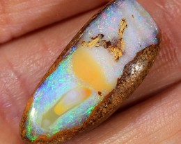 12ct 24x10mm Pipe Wood Fossil Boulder Opal  [LOB-1900]