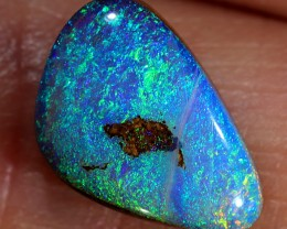 2.7ct 12x8mm Pipe Wood Fossil Boulder Opal  [LOB-1932]