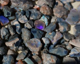 TWENTY OUNCES LIGHTNING RIDGE BLACK OPAL OFFCUTS