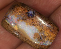 28ct 26x15mm Pipe Wood Fossil Boulder Opal  [LOB-1975]