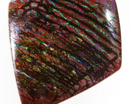 42.0CTS WOOD FOSSIL BOULDER OPAL WS265