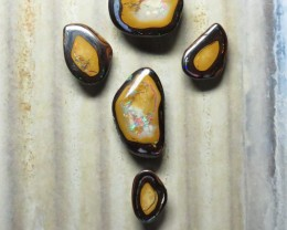 43.45ct Queensland Boulder Opal Yowah Nut Set