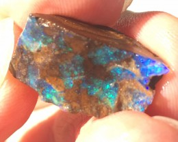 Rough Boulder Opal From Quilpie