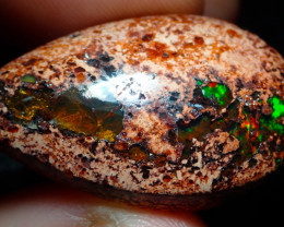 $1 NR Auction 39ct Mexican Matrix Cantera Multicoloured Fire Opal