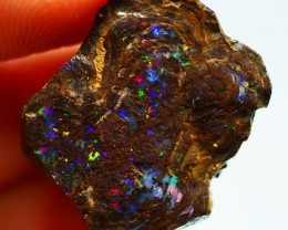 36.95CT VIEW ROUGH QUEENSLAND GEM MATRIX BOULDER OPAL PJ10