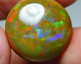 13.00 CRT BROWN BASE ROUND 3D PATCHWORK MULTICOLOR WELO OPAL-